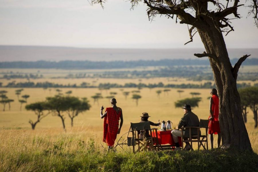 Masai mara wildlife reserve Kenya