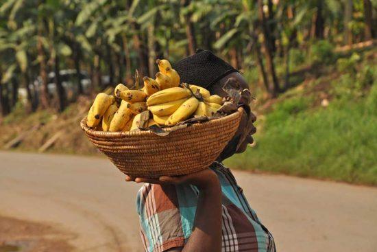 Uganda food